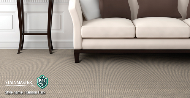 Stylish, yet practical carpet from Stainmaster: Style name: Hannon Park